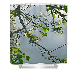 Cherry Tree Hack Shower Curtain