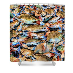 Shower Curtain featuring the photograph Chesapeake Bay Blue Crabs by JC Findley