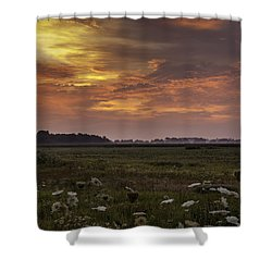 Chesapeake Sunrise II Shower Curtain by David Cote