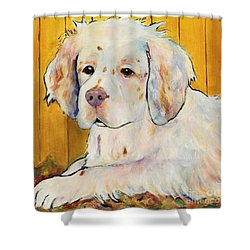 Chester Shower Curtain by Pat Saunders-White