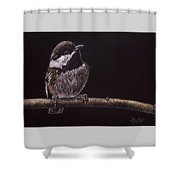 Chestnut Backed Chickadee Shower Curtain