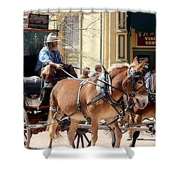 Chestnut Horses Pulling Carriage Shower Curtain