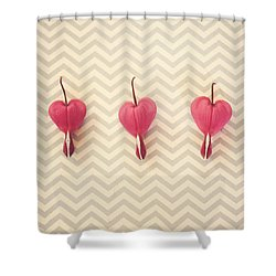 Chevron Hearts Shower Curtain by Robin Dickinson