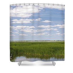 Cheyenne Bottoms Shower Curtain