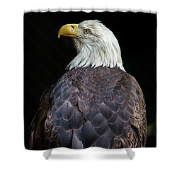Cheyenne The Eagle Shower Curtain