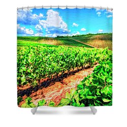 Chianti Vineyard In Tuscany Shower Curtain by Dominic Piperata
