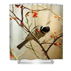 Chickadee 1 Of 2 Shower Curtain