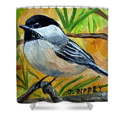 Chickadee In The Pines - Birds Shower Curtain