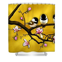 Chickadee On Blooming Magnolia Branch Shower Curtain