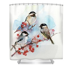 Chickadees With Berries Shower Curtain