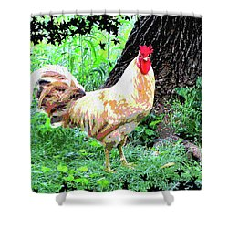 Shower Curtain featuring the mixed media Chicken Inthe Woods by Charles Shoup