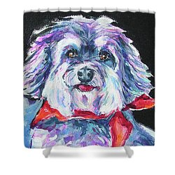 Chico Shower Curtain