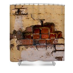 Chico Wall 79 Shower Curtain