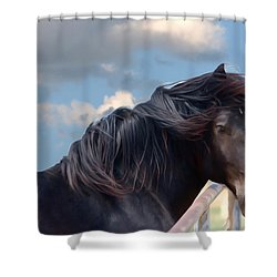 Chief - Windy Portrait Series 1 - Digitalart Shower Curtain
