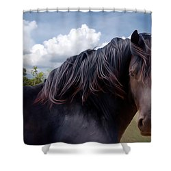 Chief - Windy Portrait Series 3 - Digitalart Shower Curtain