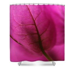 Chiffon Shower Curtain