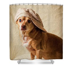Chihuahua In A Newsboy Hat Shower Curtain