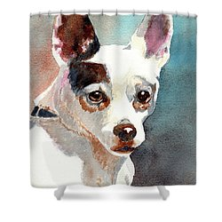 Chihuahua  Shower Curtain by LeAnne Sowa