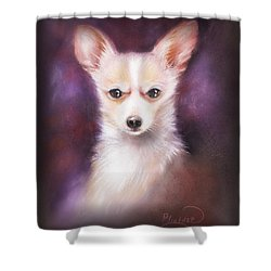 Shower Curtain featuring the drawing Chihuahua No. 1 by Patricia Lintner