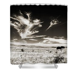 Chihuahuan Desert In Sepia Shower Curtain