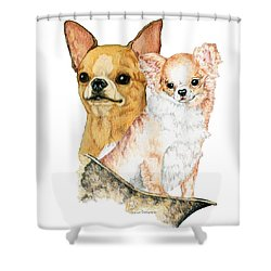 Chihuahuas Shower Curtain by Kathleen Sepulveda