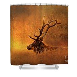 Chillin' Elk Shower Curtain