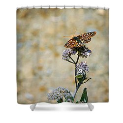 Shower Curtain featuring the photograph Chillin' In Color by T Brian Jones