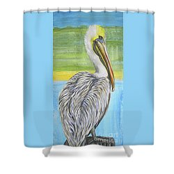 Chillin Shower Curtain