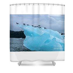 Chillin Shower Curtain