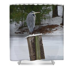 Chilly Blue Heron Shower Curtain