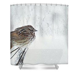 Shower Curtain featuring the mixed media Chilly Song Sparrow by Lori Deiter