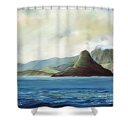 Chinamans Hat Shower Curtain by Han Choi - Printscapes