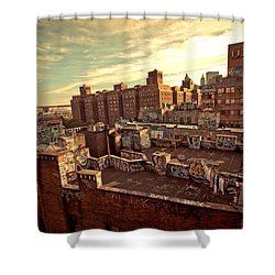 Chinatown Rooftop Graffiti And The Brooklyn Bridge - New York City Shower Curtain by Vivienne Gucwa