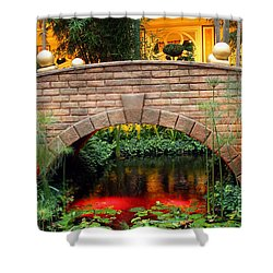 Chinese Bridge Shower Curtain