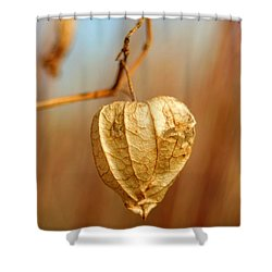 Ground Cherry Shower Curtain
