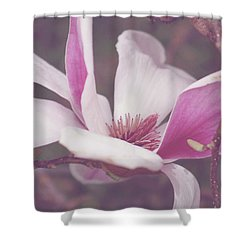 Shower Curtain featuring the photograph Chinese Magnolia Bloom by Toni Hopper