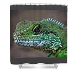 Chinese Water Dragon Shower Curtain by Savannah Gibbs
