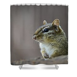 Chipmunk Profile Shower Curtain