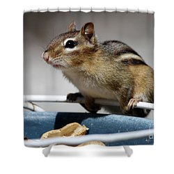 Chippy Shower Curtain by Karol Livote