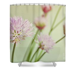 Shower Curtain featuring the photograph Chives In Flower by Lyn Randle
