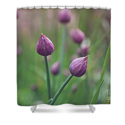 Shower Curtain featuring the photograph Chives by Lyn Randle
