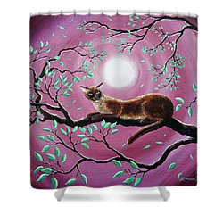 Chocolate Burmese Cat In Dancing Leaves Shower Curtain by Laura Iverson