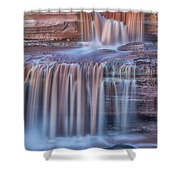 Chocolate Swirls Shower Curtain
