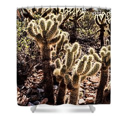 Cholla Cacti Shower Curtain