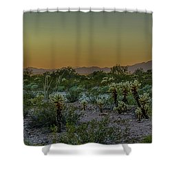 Cholla Desert Sunset Shower Curtain