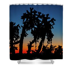 Shower Curtain featuring the photograph Cholla Silhouettes by Rick Furmanek