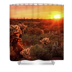 Shower Curtain featuring the photograph Cholla Sunset In The Sonoran  by Saija Lehtonen