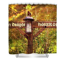 Choose Your Path Shower Curtain