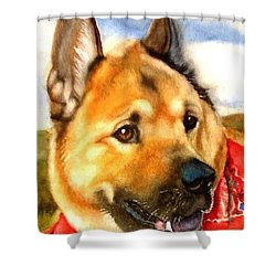 Chow Shepherd Mix Shower Curtain by Marilyn Jacobson