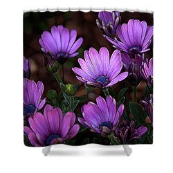Shower Curtain featuring the digital art Morning Stretch by Stuart Turnbull
